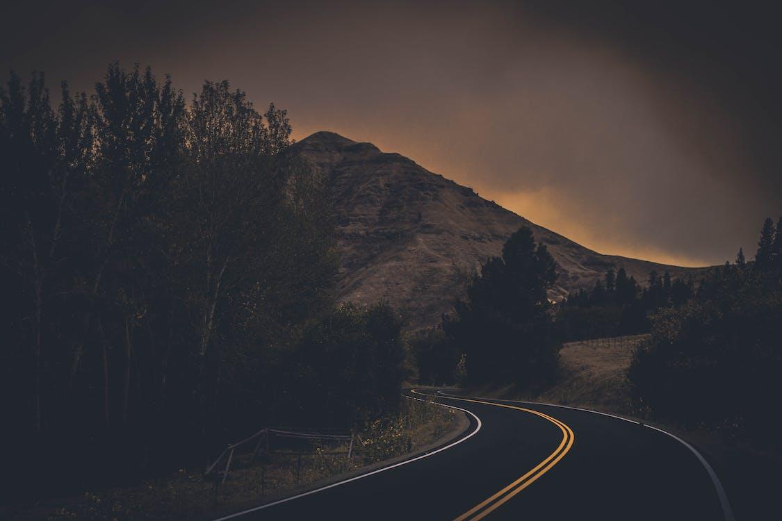 apus, arbori, autostradă