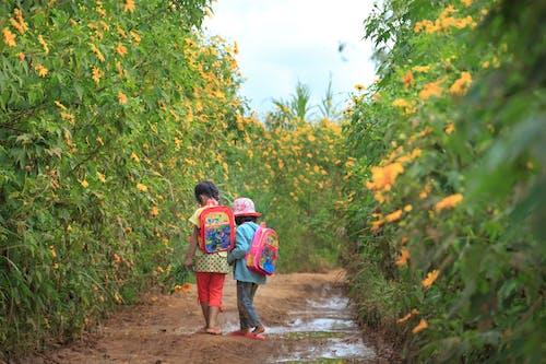 Kostnadsfri bild av anläggning, barn, bete, blommor