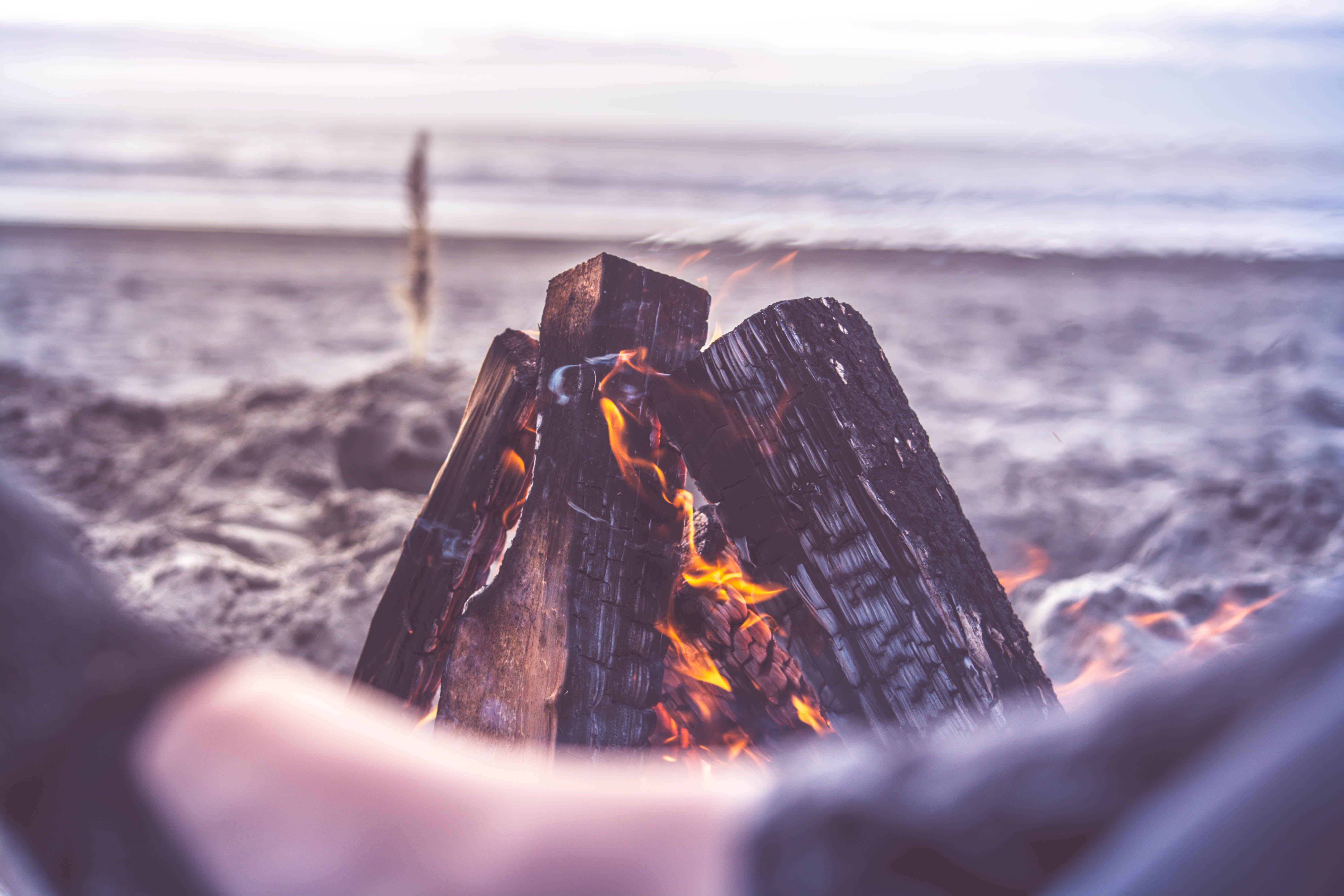 beach, bonfire, camping