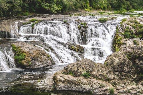 Photos gratuites de arbres, cailloux, cascades, crique