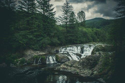 Gratis lagerfoto af å, bjerg, flod, kampesten
