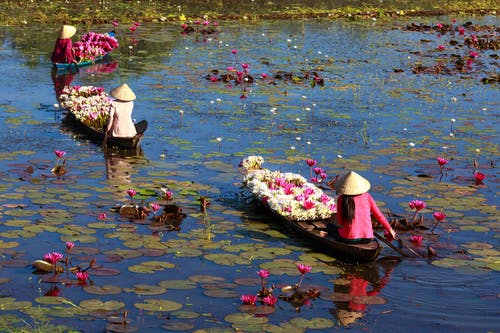 Three Women Riding Boats with Lotus Flowers