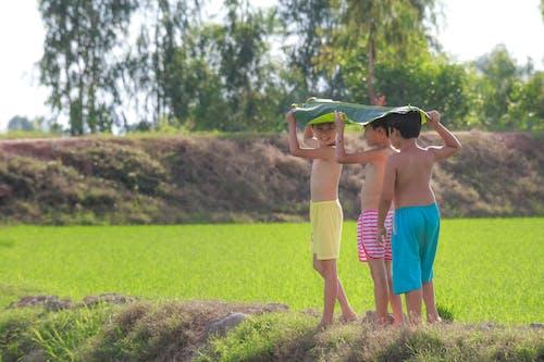 Ilmainen kuvapankkikuva tunnisteilla hauska, kenttä, kesä, lapset