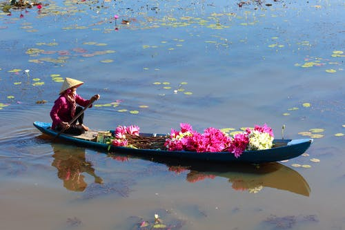 Photo Of Flowers In Boat