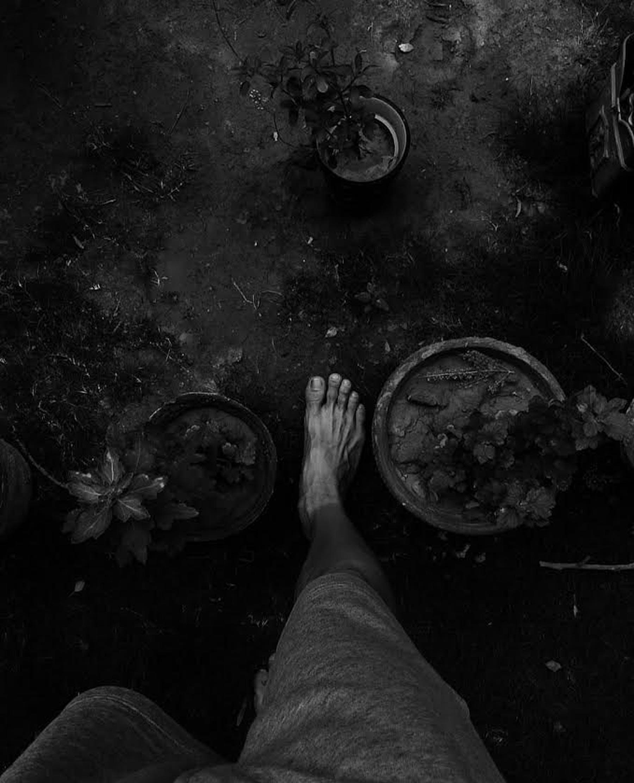 Photos gratuites de marcher, photo monochrome, pieds nus, plantes en pot