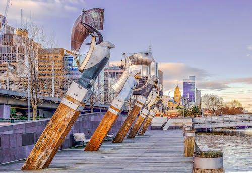Free stock photo of art, australia, bridge, image