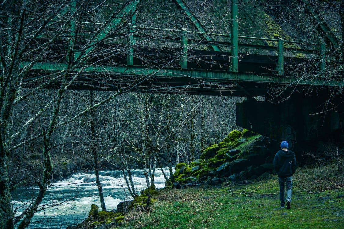 bro, dagslys, flod