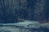 cold, landscape, nature