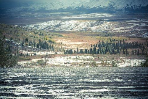 Gratis lagerfoto af bjerg, dagslys, flod, landskab