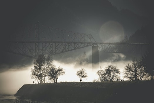 Free stock photo of bridge, silhouette, fog, mist