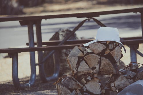 White Hat on Brown Firewood