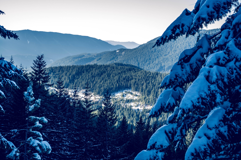 cold, landscape, mountain