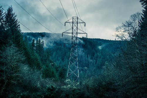 Fotobanka sbezplatnými fotkami na tému drôty, elektrická energia, elektrické vedenie, les