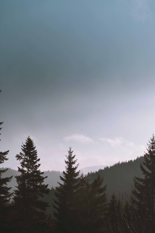 Ingyenes stockfotó békés, borongós, ég, égboltok témában