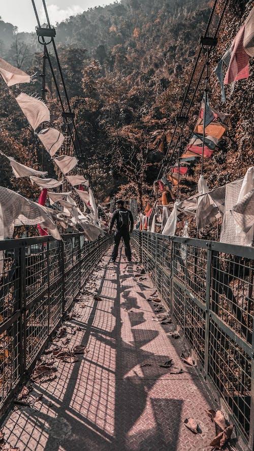 Бесплатное стоковое фото с dainese, гималаи, гора, живописное небо