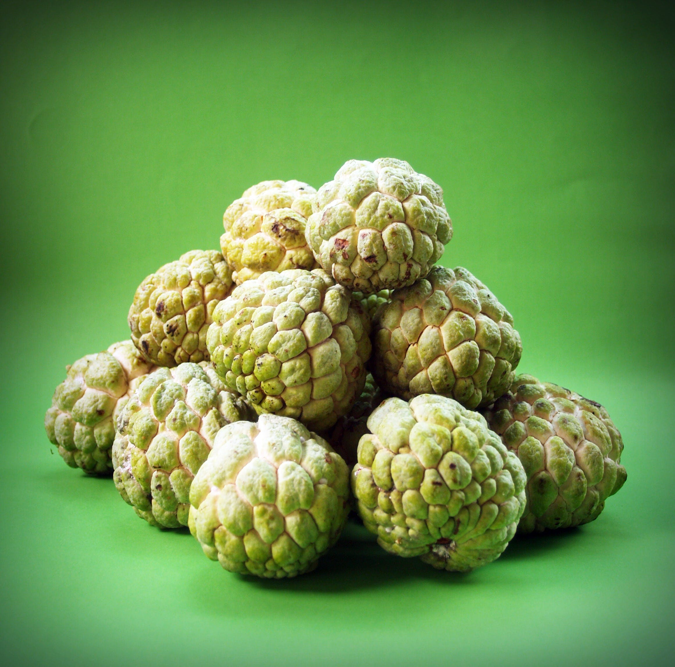 Sugar Apple Lot