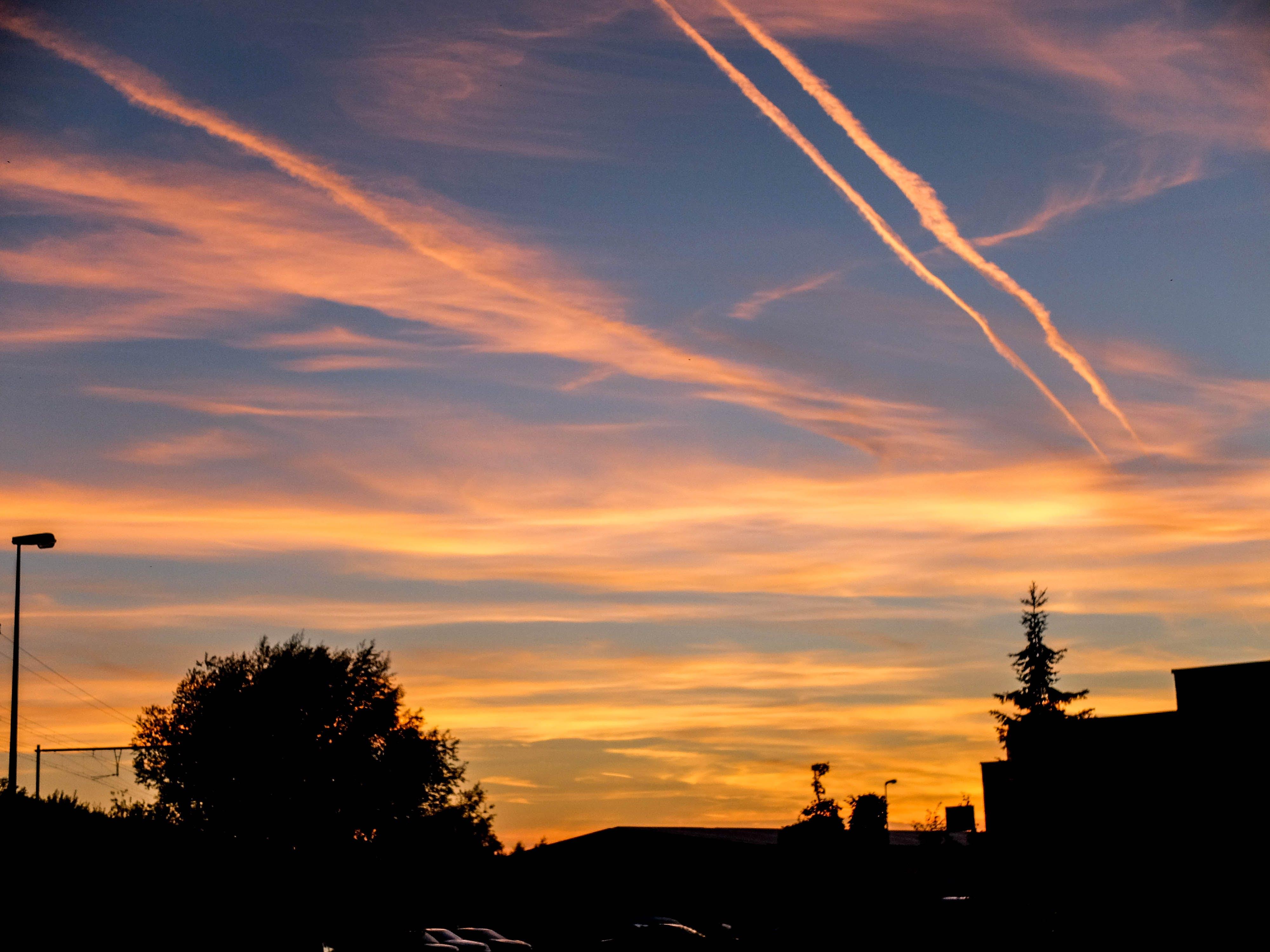 Free stock photo of contrast, evening, sun, sunset