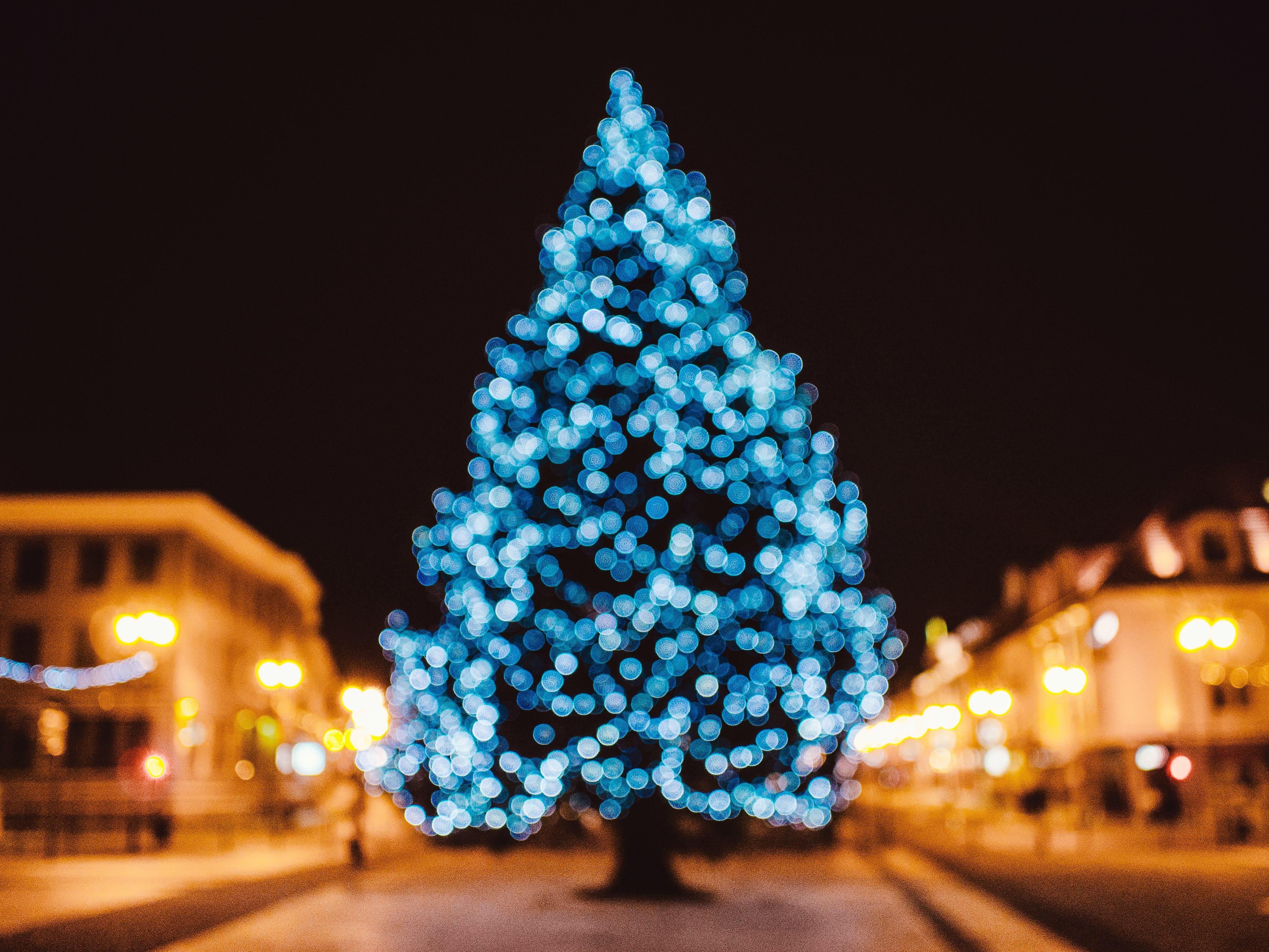 Kostenloses Stock Foto zu verschwimmen, weihnachten, weihnachten wallpaper, weihnachtsbaum