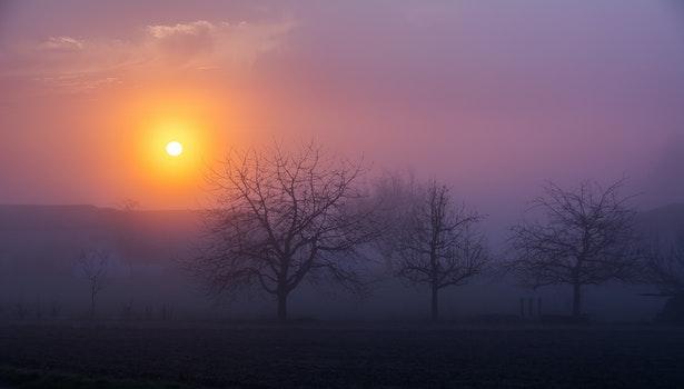 Nature wallpaper of dawn, nature, sky, sunset