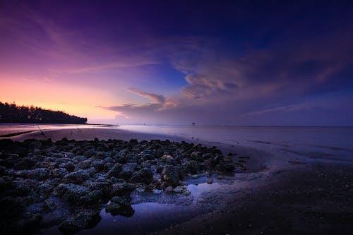 Landscape Photography of Beach Line