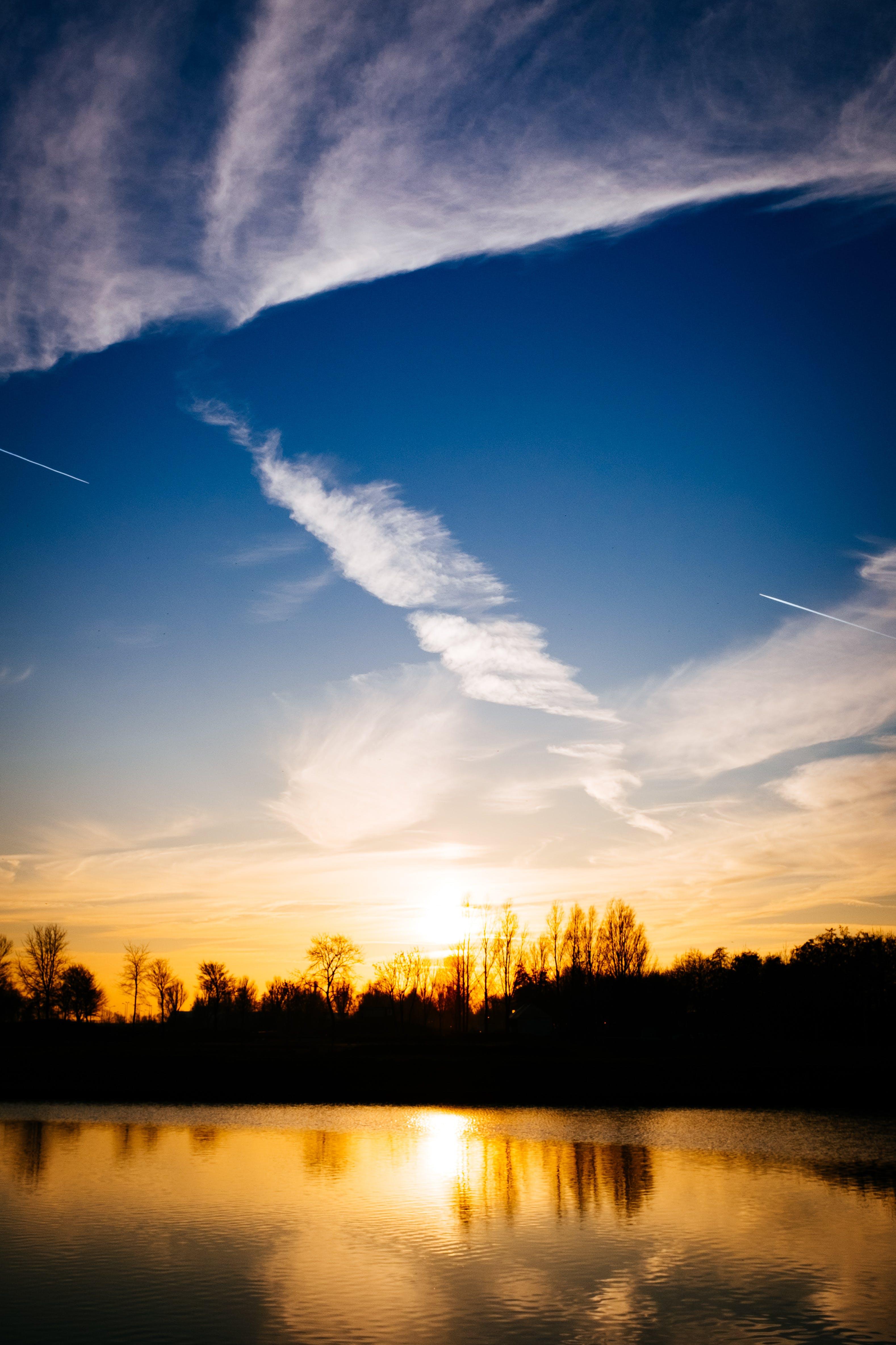 Gratis stockfoto met bomen, dageraad, h2o, hemel