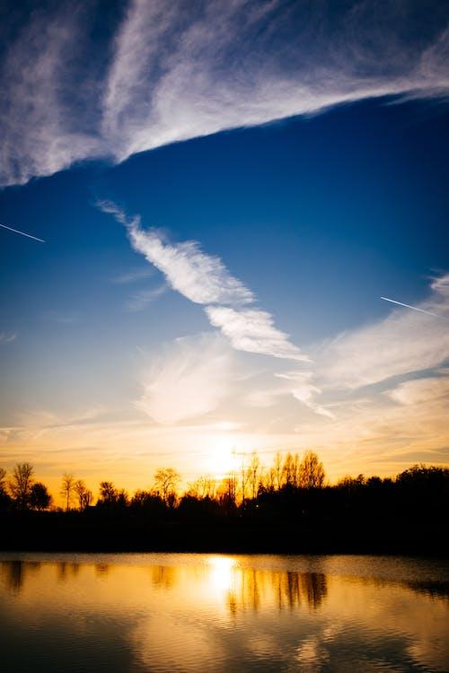 Darmowe zdjęcie z galerii z chmury, drzewa, malowniczy, natura