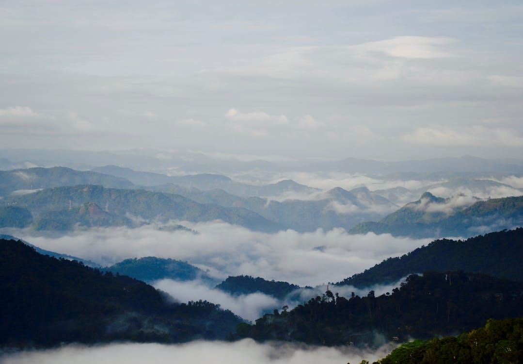 Gratis stockfoto met Indië, kerala, natuur