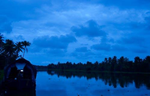 Безкоштовне стокове фото на тему «kerala, затоки, кокосові пальми»