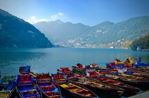Безкоштовне стокове фото на тему «барвистий, катання на човнах, латінйан»