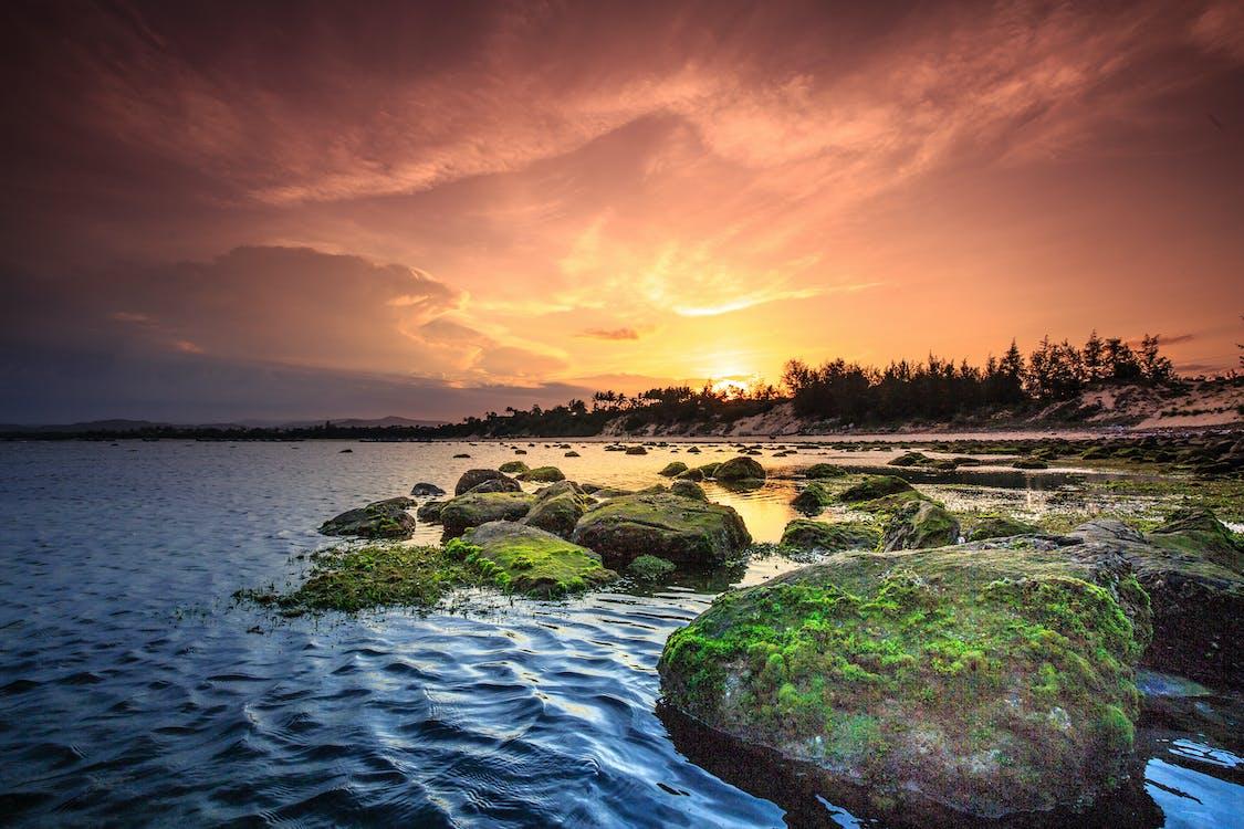 à beira-mar, água, alvorecer
