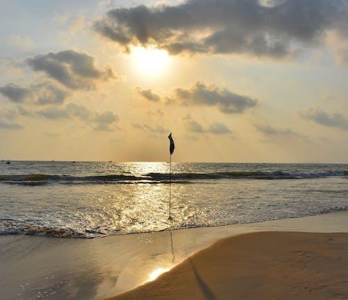 Foto stok gratis pantai, pasir pantai