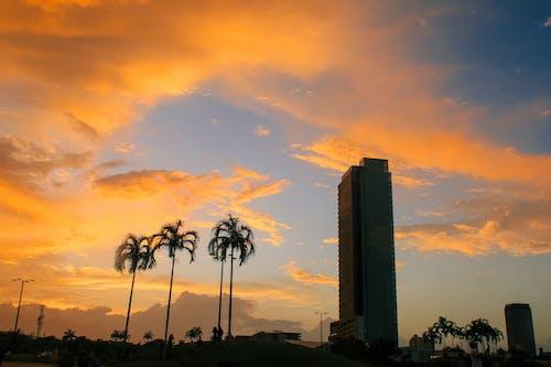 คลังภาพถ่ายฟรี ของ กลางแจ้ง, ครึ้มเมฆ, ความสงบ, งดงาม