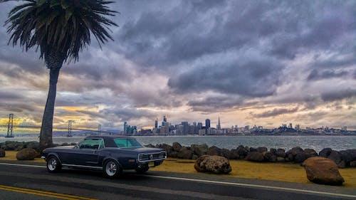 Безкоштовне стокове фото на тему «Сан-Франциско»