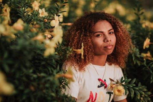 Ingyenes stockfotó afro-amerikai, afro-amerikai nő, ajkak, aranyos témában