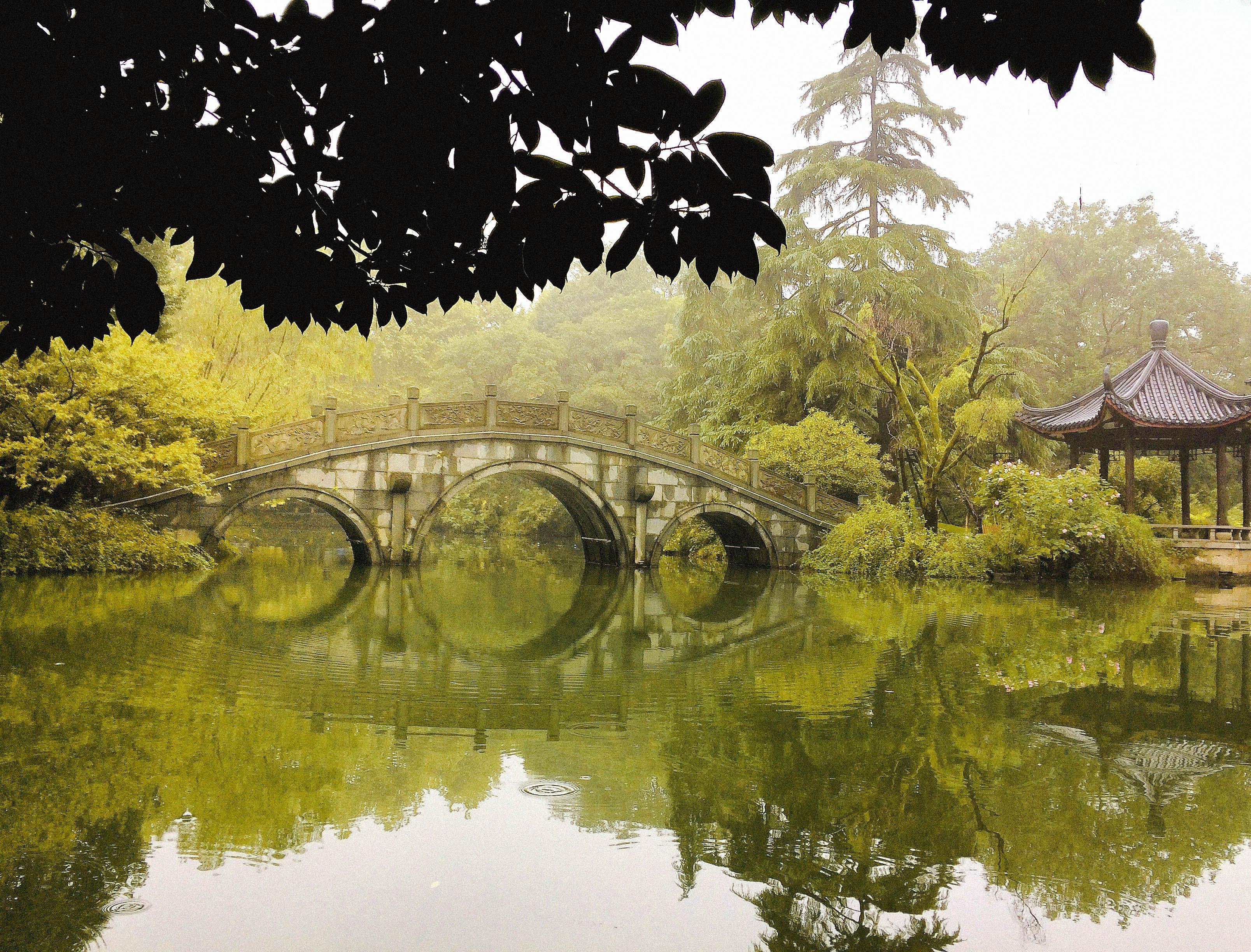 Free stock photo of autumn, autumn colours, autumn leaves, bridge