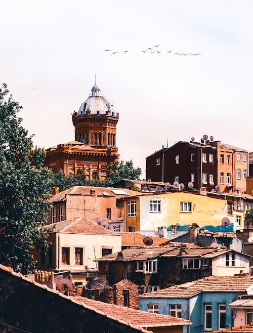 地標, 城鎮, 外觀, 大教堂 的 免费素材照片