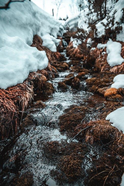 Photos gratuites de cailloux, couler, couvert de neige, eau