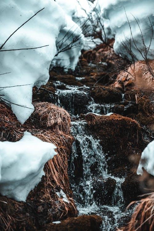 Foto profissional grátis de água, ao ar livre, branco, cachoeiras