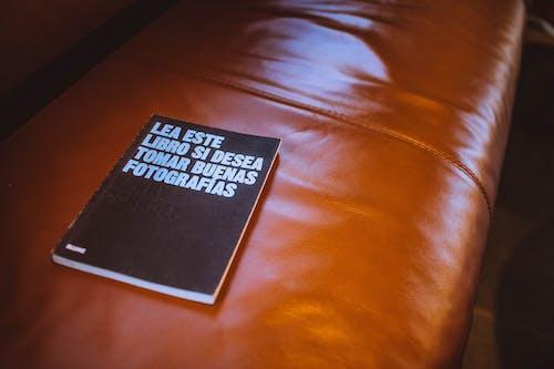 Foto profissional grátis de cadeira, couro, livro, mobília