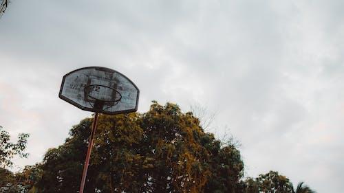 Ilmainen kuvapankkikuva tunnisteilla koripallo, koripallokori, koripallorengas