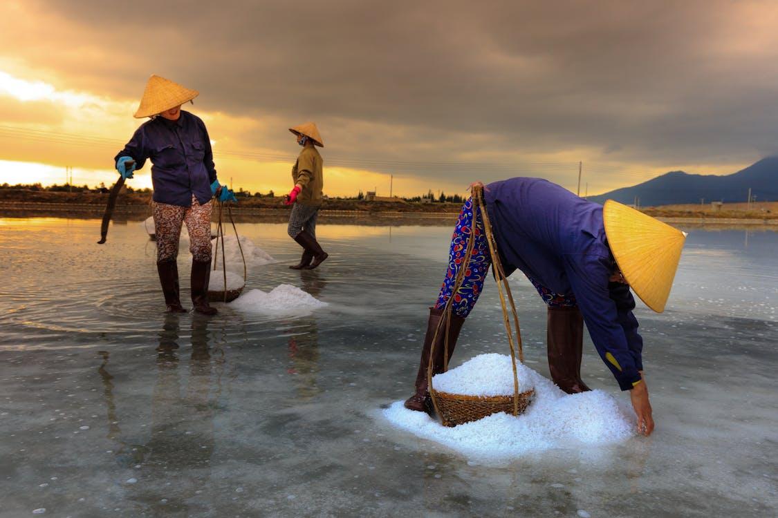 Women Making Salt