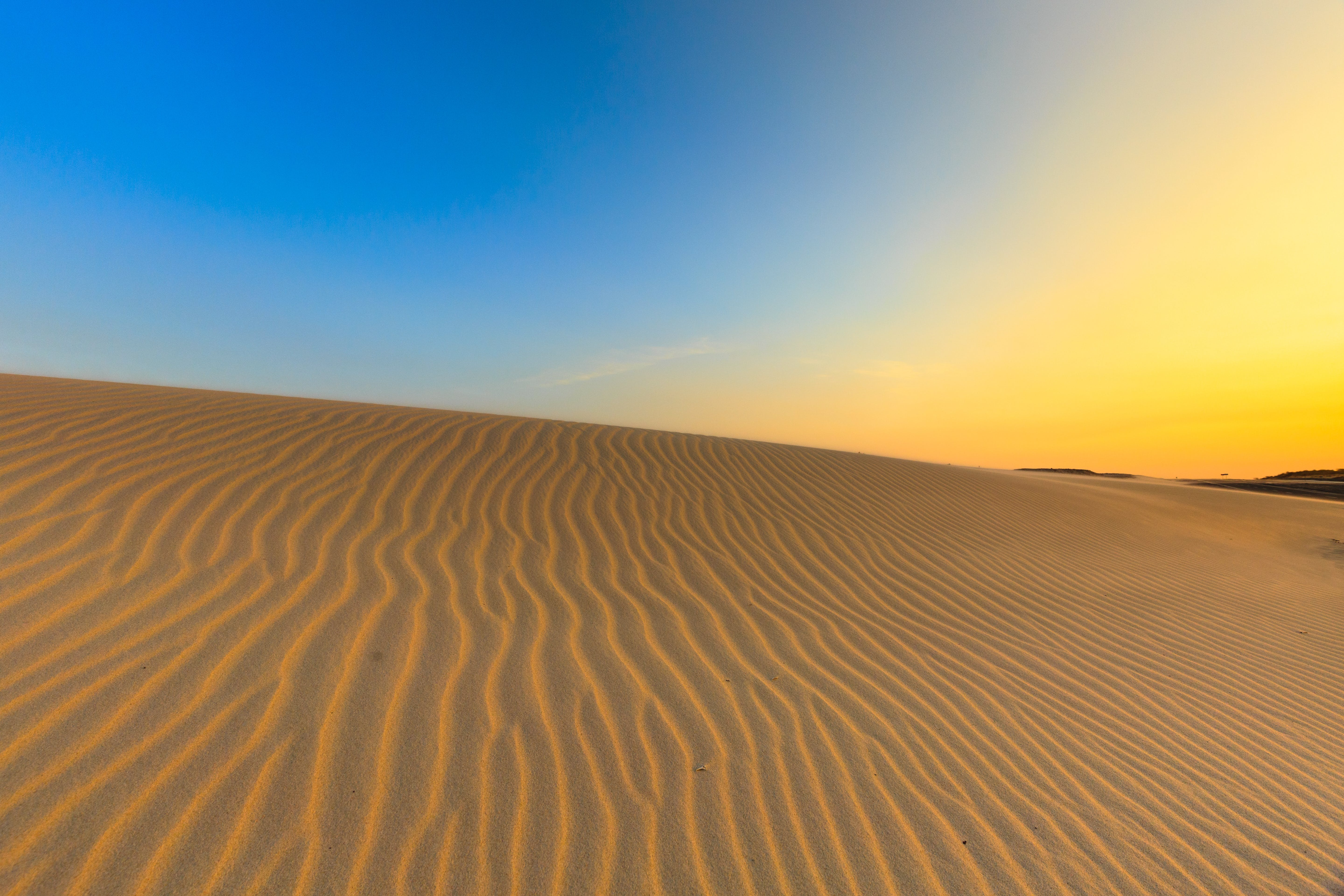 Brown Sand Field