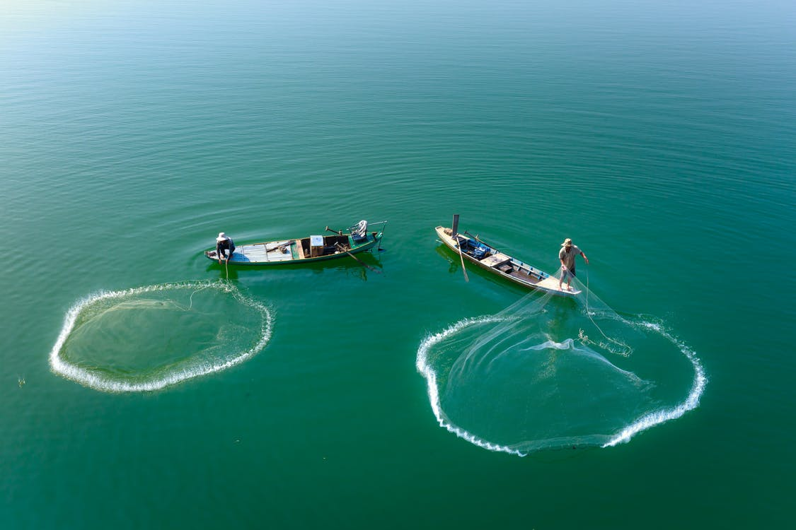 Photo Of People Catching Fishes