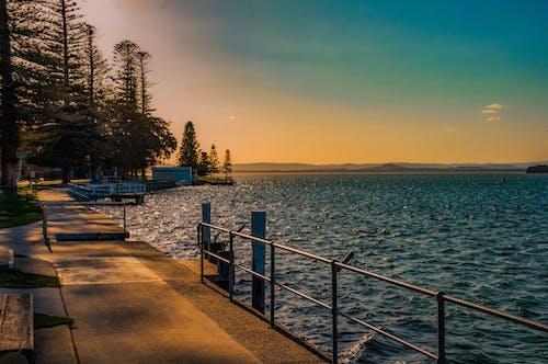 Δωρεάν στοκ φωτογραφιών με nsw, Αυστραλία, δέντρα, η είσοδος