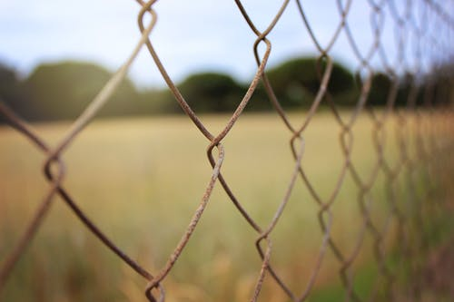 Brown Field Fence