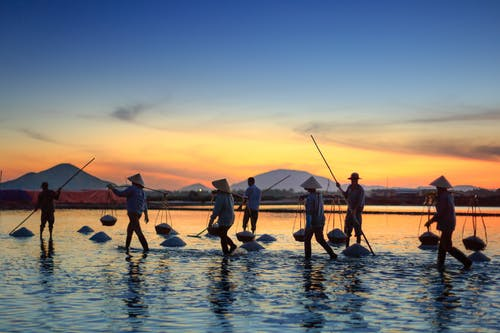 People Carrying Basket Standing in Body of Water during Golden Hour