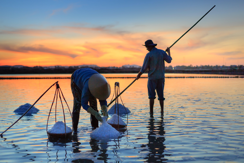 Бесплатное стоковое фото с Взрослый, восход, горизонт, дневное время