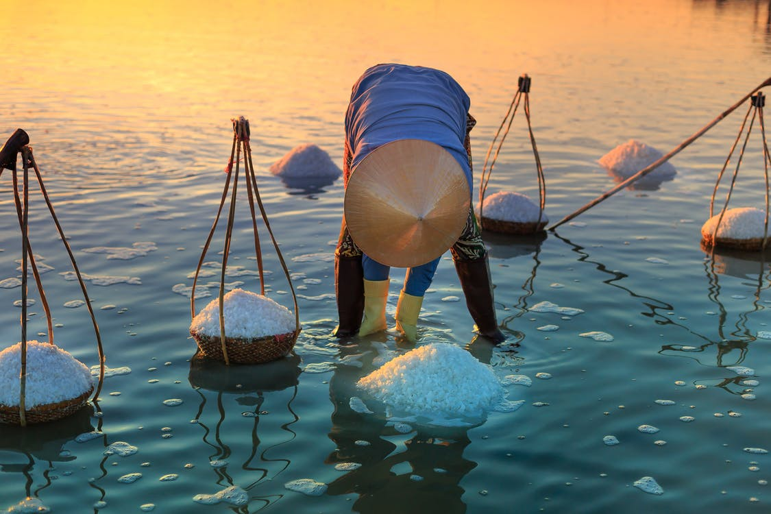 Man Harvesting Salt