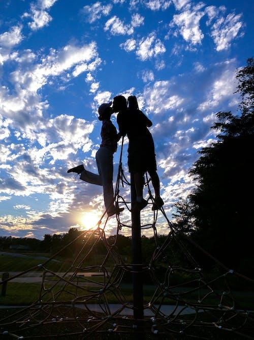 Бесплатное стоковое фото с дерево, люди, мужчина, небо