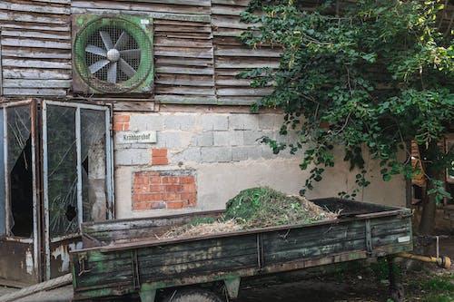 Immagine gratuita di albero, germania, strada